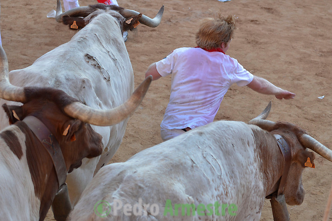 Participants run in front of Dolores Aguirre's bulls during a bull run of the San Fermín Festival in Pamplona, northern Spain, on July 8, 2013. © PEDRO ARMESTRE