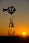 Aermotor windmill on steel tower, sunrise on the Staked Plains of Texas.
