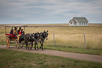 1880 TOWN in South Dakota is located 22 west of Murdo,  and has more than 30 buildings from the 1880 to 1920 era, authentically furnished with thousands of relics, historical accounts and photographs.  This is also the Longhorn Ranch and home to more than 100 Texas longhorn cattle.