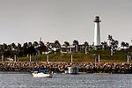 Lighthouse, Long Beach, CA.