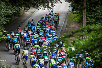 Peloton up the 'La Houppe'. <br /> <br /> 71th Halle Ingooigem 2018 (1.1)<br /> 1 Day Race: Halle > Ingooigem (197.7km)