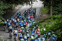 Peloton up the 'La Houppe'. <br /> <br /> 71th Halle Ingooigem 2018 (1.1)<br /> 1 Day Race: Halle &gt; Ingooigem (197.7km)