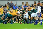 9th September 2017, nib Stadium, Perth, Australia; Supersport Rugby Championship, Australia versus South Africa; South Africa retain possesion in the scrum during play in the second half