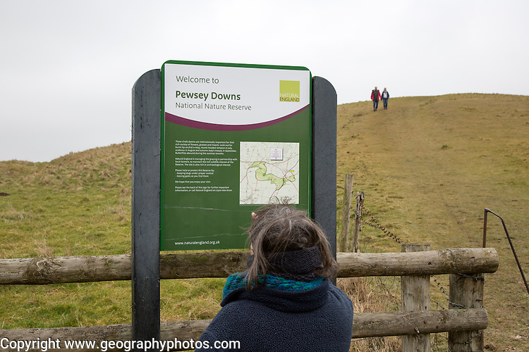 Pewsey Downs national nature reserve, Wiltshire, England, UK