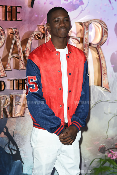 LONDON, UK. November 01, 2018: Jayden Fowora-Knight at the European premiere of &quot;The Nutcracker and the Four Realms&quot; at the Vue Westfield, White City, London.<br /> Picture: Steve Vas/Featureflash