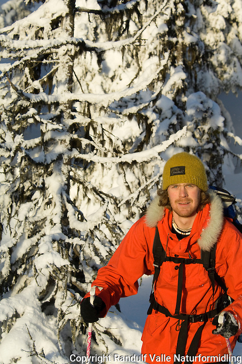 Mann går på ski i snødekt skog. ---- Man skiing in snow covered forest.