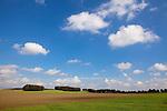Europa, DEU, Deutschland, Nordrhein Westfalen, NRW, Rheinland, Niederrhein, Rheurdt, Schaephuysener Hoehen, Agrarlandschaft, Himmel, Wolken, Cumuluswolken, Kategorien und Themen, Natur, Umwelt, Landschaft, Jahreszeiten, Stimmungen, Landschaftsfotografie, Landschaften, Landschaftsphoto, Landschaftsphotographie, Wetter, Himmel, Wolken, Wolkenkunde, Wetterbeobachtung, Wetterelemente, Wetterlage, Wetterkunde, Witterung, Witterungsbedingungen, Wettererscheinungen, Meteorologie, Bauernregeln, Wettervorhersage, Wolkenfotografie, Wetterphaenomene, Wolkenklassifikation, Wolkenbilder, Wolkenfoto....[Fuer die Nutzung gelten die jeweils gueltigen Allgemeinen Liefer-und Geschaeftsbedingungen. Nutzung nur gegen Verwendungsmeldung und Nachweis. Download der AGB unter http://www.image-box.com oder werden auf Anfrage zugesendet. Freigabe ist vorher erforderlich. Jede Nutzung des Fotos ist honorarpflichtig gemaess derzeit gueltiger MFM Liste - Kontakt, Uwe Schmid-Fotografie, Duisburg, Tel. (+49).2065.677997, ..archiv@image-box.com, www.image-box.com]