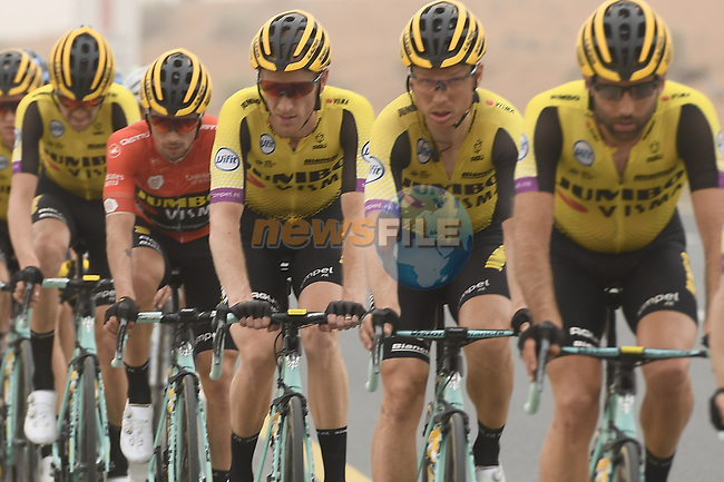 The peloton including race leader Primoz Roglic (SLO) and Team Jumbo-Visma during Stage 6 of the 2019 UAE Tour, running 175km form Ajman to Jebel Jais, Dubai, United Arab Emirates. 1st March 2019.<br /> Picture: LaPresse/Fabio Ferrari | Cyclefile<br /> <br /> <br /> All photos usage must carry mandatory copyright credit (© Cyclefile | LaPresse/Fabio Ferrari)