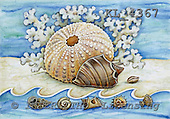 Interlitho, Theresa, MODERN, paintings, sea-anemone, snail-shells, KL4367,#n# moderno, arte, illustrations, pinturas ,everyday