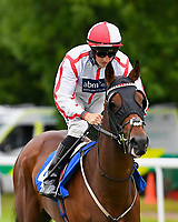 Pegasus Bridge ridden by Tom Marquand goes down to the start  of The Molson Coors Handicap  during Evening Racing at Salisbury Racecourse on 11th June 2019