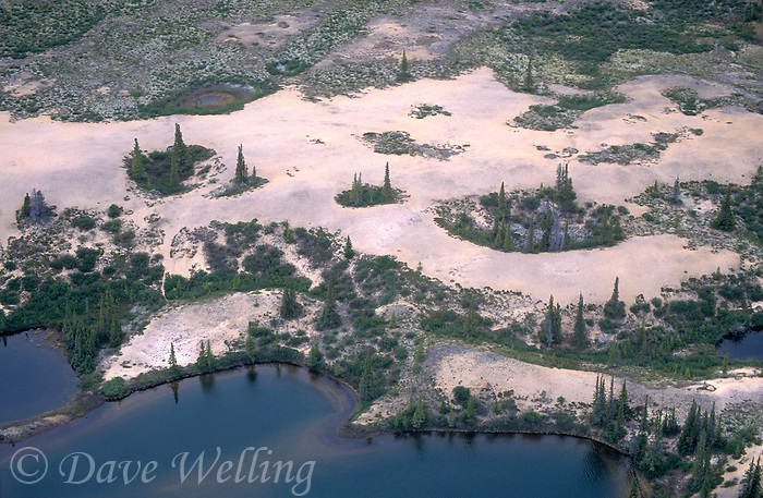 731000211 sand eskers boreal forest trees and pothole ponds seen from the air in the northwest territories in northern canada