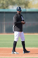 Chicago White Sox outfielder Luis Robert (92) during Spring Training Camp on February 25, 2018 at Camelback Ranch in Glendale, Arizona. (Zachary Lucy/Four Seam Images)