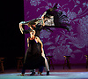 Ballet Flamenco 20th February 2015