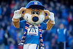 Broxi Bear to the Motherwell fans