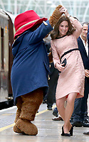 Duchess Kate, Prince William and Prince Harry - Charities Forum Event