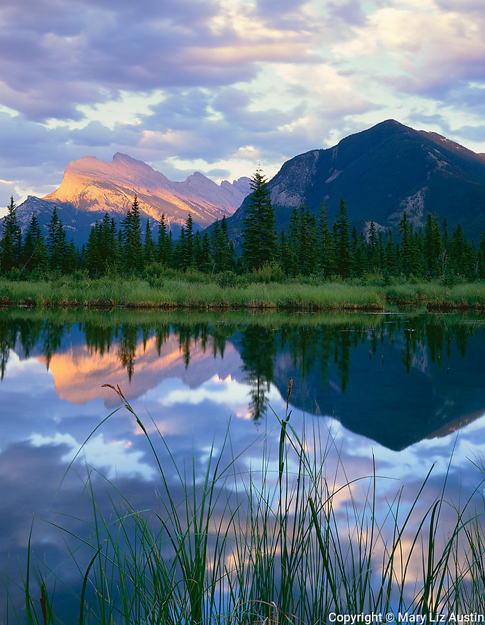 Banff National Park, Alberta, Canada:  Dappled evening light on Mount Rundle and Sulphur Mountain reflected on calm water of the Vermillion Lakes