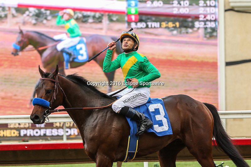 DEL MAR, CA  NOVEMBER 19:  #3 Mastery, ridden by Mike Smith, after winning the Bob Hope Stakes (Glll) at Del Mar, Ca on November 19, 2016. (Photo by Casey Phillips/Eclipse Sportswire/Getty Images)