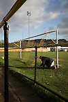 The groundsman fixes a goal net at Lye Meadow before Alvechurch hosted Highgate United in a Midland Football League premier division match. Originally founded in 1929 and reformed in 1996 after going bust, the club has plans to move from their current historic ground to a new purpose-built stadium in time for the 2017-18 season. Alvechurch won this particular match by 3-0, watched by 178 spectators, taking them back to the top of the league.