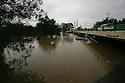 Bulimba Creek, near Meadowlands Road, Carindale, Brisbane, Queensland, Australia, Wednesday, January 25, 2012. (Photo by John Pryke)