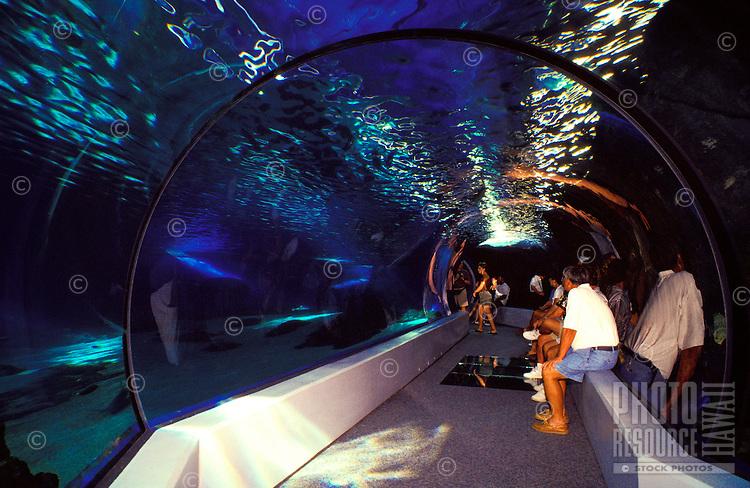 Tourists enjoy a day at the Maui Ocean Center Aquarium at Maalaea Harbor.