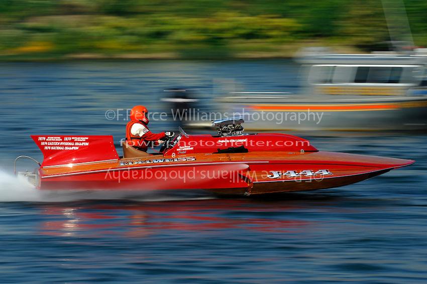 """Matt Morsheimer, J-444 """"Edelweiss"""" (7 Litre Div II class Lauterbach hydroplane)"""