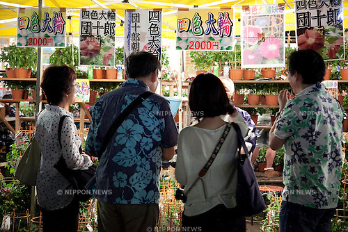 "July 8, 2014, Tokyo, Japan - A vendor shows his plants to customers at the ""Iriya Asagao-ichi Market Festival"" on July 8, 2014. The market festival was the most famous for asagao plants (morning glories) in Edo period, and has been held on July 6, 7, and 8 at the Temple of Iriya Kishimojin in Tokyo every year since late Edo period. The flower was introduced into Japan 1200 year ago from China for medical uses. (Photo by Rodrigo Reyes Marin/AFLO)"