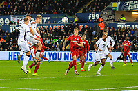 29th November 2019; Liberty Stadium, Swansea, Glamorgan, Wales; English Football League Championship, Swansea City versus Fulham; George Byers of Swansea City scores his sides first goal in the 65th minute to make the score 1-2 - Strictly Editorial Use Only. No use with unauthorized audio, video, data, fixture lists, club/league logos or 'live' services. Online in-match use limited to 120 images, no video emulation. No use in betting, games or single club/league/player publications