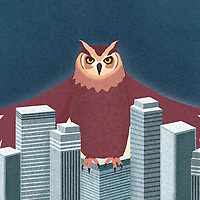 Large owl sheltering the city business district ExclusiveImage