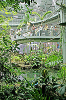 People touring Rainforests of the World, new California Academy of Sciences, San Francisco California