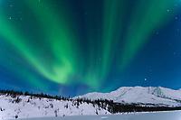 Aurora borealis over the Koyukuk river basin in the Brooks Mountain Range, Alaska
