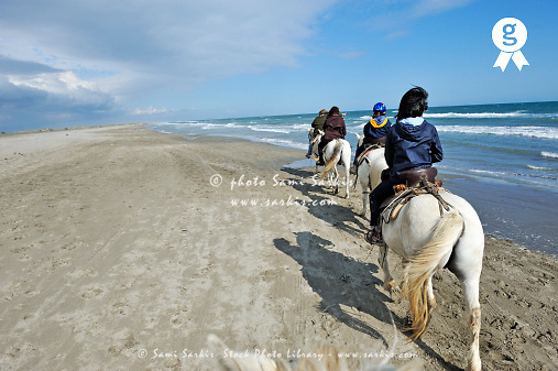Four people riding camargue horse on beach (Licence this image exclusively with Getty: http://www.gettyimages.com/detail/107190700 )