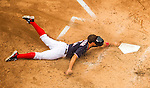 29 May 2016: Washington Nationals first baseman Ryan Zimmerman slides home in the 4th inning to score Washington's 3rd run against the St. Louis Cardinals at Nationals Park in Washington, DC. The Nationals defeated the Cardinals 10-2 to split their 4-game series. Mandatory Credit: Ed Wolfstein Photo *** RAW (NEF) Image File Available ***