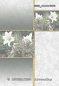 Hans, SYMPATHY, paintings+++++,DTSC4111210832,#T# Beileid, condolación, illustrations, pinturas ,everyday