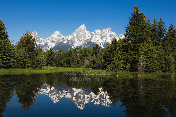 Tetons Reflecting in pond, Schwabacher Landing, Grand Teton NP,Wyoming, USA