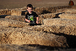 Axle Jones, 3, runs the maze at the Corley Ranch Harvest Festival in Gardnerville, Nev. on Saturday, Oct. 27, 2012. .Photo by Cathleen Allison