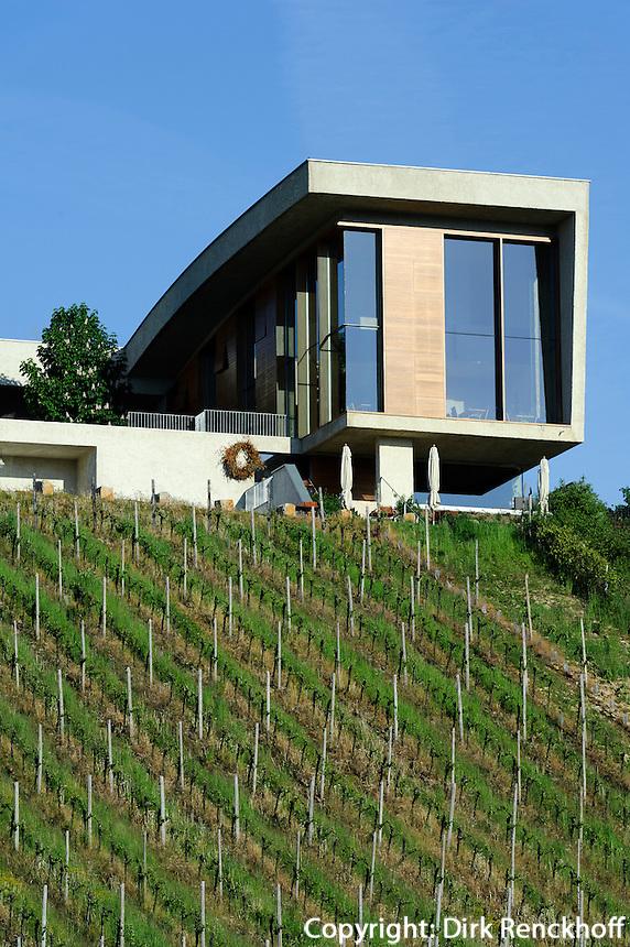 Weingut Henri Ruppert auf dem Markusberg bei Remerschen, Gebeäude des Architekten Francois Valentiny, Luxemburg