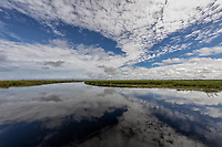 The Okavango river with whispy summer clouds reflected in the crystal clear flowing waters that bring life to the Kalahari Desert