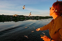 Nicole Schmidt feeding hungry seagulls that are catching breadcrumbs mid-air, while following MS Yurij Andropov on the Svir between lakes Onega and Ladoga..A typical Russian village in the background enjoys the warm rays of the late evening sun.