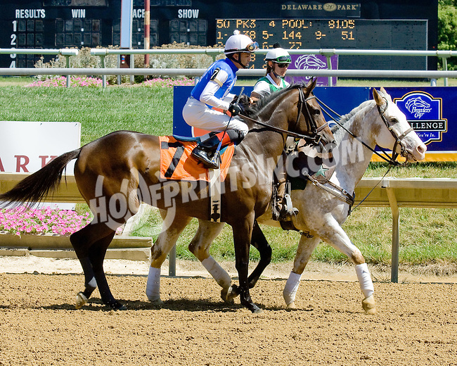 Crazy About Me at Delaware Park on 7/25/12