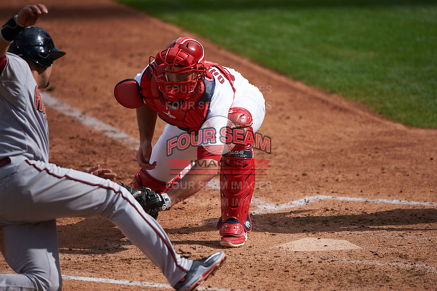 Surprise Saguaros catcher Mike Ohlman (84) looks to tag Oscar Hernandez (25), who was called safe, sliding into home during an Arizona Fall League game against the Salt River Rafters on October 20, 2015 at Salt River Fields at Talking Stick in Scottsdale, Arizona.  Surprise defeated Salt River 3-1.  (Mike Janes/Four Seam Images)