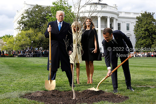 U.S. President Donald Trump with France's president Emmanuel Macron and First Ladies Melania Trump and Brigitte Macron plant a tree, a gift from the President and Mrs. Macron, on the South Lawn of the White House in Washington, D.C., U.S., on Monday, April 23, 2018. As Macron arrives for the first state visit of Trump's presidency, the U.S. leader is threatening to upend the global trading system with tariffs on China, maybe Europe too. <br /> Credit: Yuri Gripas / Pool via CNP