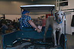 David Brandt returns to his equipment garage with his dog, Yankee, on his 1,200-acre farm in central Ohio. Brandt grows corn, soy, wheat and hay on his farm that he runs with his wife, Kendra, in Carroll, Ohio. He has been practicing no-till farming since 1971, and has planted cover crops, such as winter peas, cabbage, clover and millet, which return nutrients to the soil, since 1978. His return to these traditional farming practices have allowed Brandt to drastically reduce his usage of fertilizers and pesticides, has increased the soil fertility and strengthened the land's tolerance to drought and excessive rain.