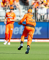 26th December 2019; Optus Stadium, Perth, Western Australia, Australia;  Big Bash League Cricket, Perth Scorchers versus Sydney Sixers; Cameron Bancroft of the Perth Scorchers catches out Daniel Hughes of the Sydney Sixers only for it to be called a no ball - Editorial Use