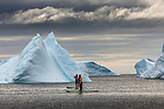 Paddleboarders and icebergs, Antarctica