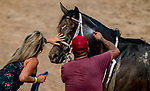 July 11, 2020: A Bit of Both gets a pat on the head from one of her connections after the Dashing Beauty Stakes on Delaware Handicap Day at Delaware Park in New Stanton, Delaware. Scott Serio/Eclipse Sportswire/CSM