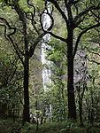 Waimoku Falls, Kipahulu