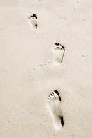 Seychelles, Island Mahe, Anse Intendance: footprints on the beach