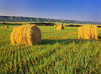 BAles and hills<br /> Qu'Appelle Valley<br /> Saskatchewan<br /> Canada
