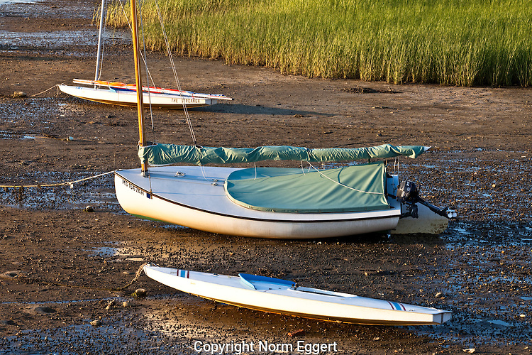 Three sailboats on the sandy beach at low tide at Pamet Harbor