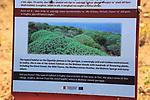 Information panel notice about Mediterranean garrigue vegetation, Gozo, Malta